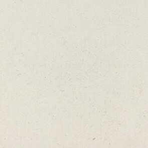 TC top L - Full Bodied Porcelain - White