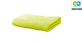 Clarysse - Green - Single Hand Towel