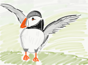 Puffin sketch card with envelope