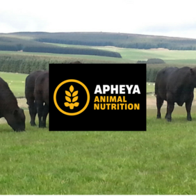 Practical Nutrition and Health of Livestock: 17th September 2020, Bristol