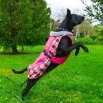 Alpine all weather dog coat raspberry plaid size Large