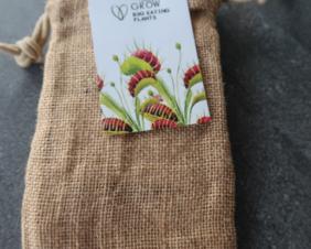 Grow your own Bug Eating plant Gift Tin