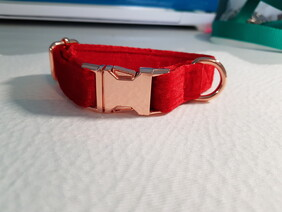Red Velvet Collar