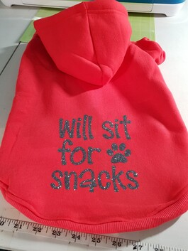 Will Sit For Snacks Hoodie