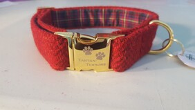 Harris Tweed Collar - Red