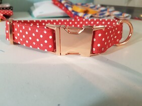 Red and White Polka Dot Collar