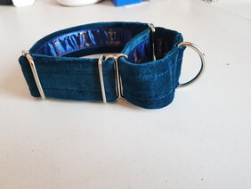 Teal Velvet Collar