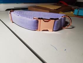 Lilac Velvet Collar