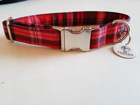 Clan Tartan - McDougall