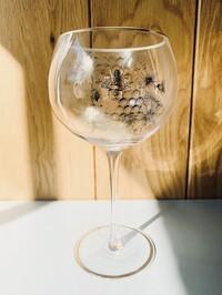 Bee Honeycomb Gin Glass