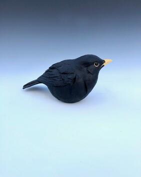 Blackbird  - Unmounted 1a