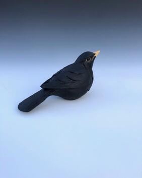 Blackbird unmounted 3a
