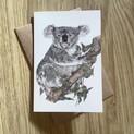Rolfie the Koala Greetings Card
