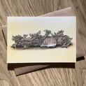 Pygmy Shrew Greetings Card