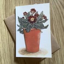 Pot of Primulas Greetings Card