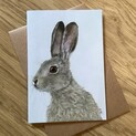 Hartley the Hare Greetings Card