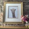 Jameela the Camel Original Painting