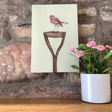 Garden Robin Canvas Print