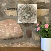 New Beginnings Nest with Eggs Canvas Print