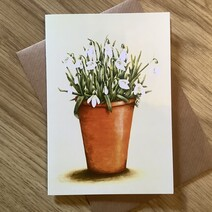Pot of Snowdrops Greetings Card