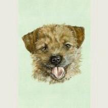 Border Terrier Print