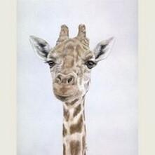 Gerald the Giraffe Canvas Print