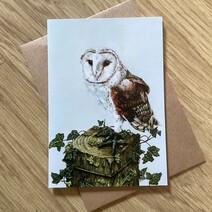 Whisper the Barn Owl Greetings Card