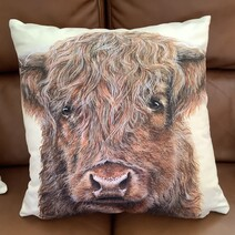 Harry the Highland Cow Luxury Faux Suede Cushion