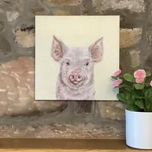 Truffle the Little Pink Piggie Canvas Print
